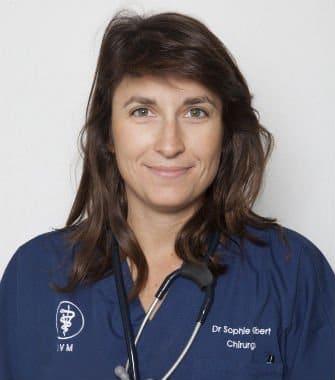 Dr Sophie Gibert