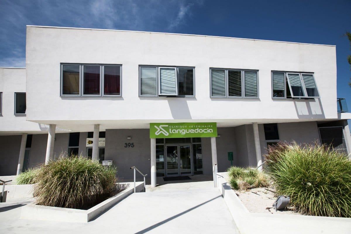 Centre hospitalier vétérinaire Languedocia Montpellier