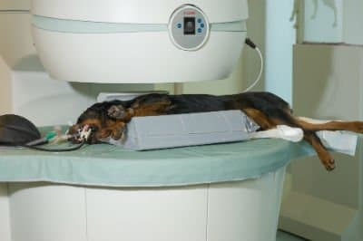 L'IRM (ou Imagerie par Résonance Magnétique)