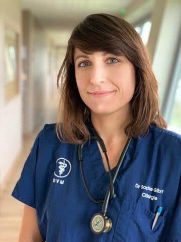 Dr Sophie Gibert vétérinaire chirurgie Languedocia Montpellier