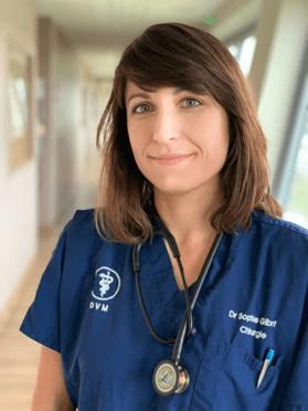 Vétérinaire Montpellier